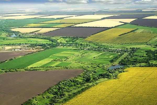 Poľnohospodársky pozemok